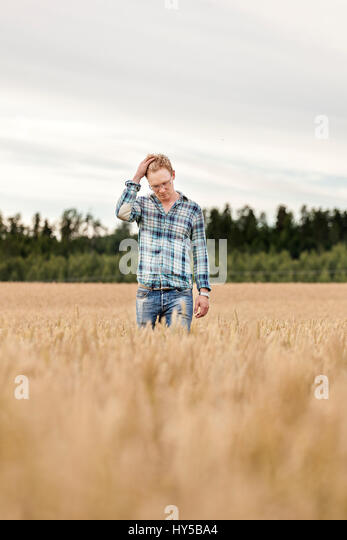 Finland, Uusimaa, Siuntio, Mid adult man standing in wheat field - Stock Image