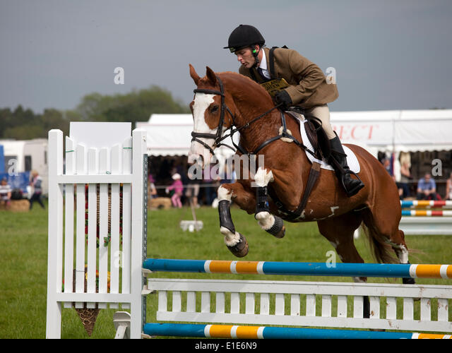 Belsay, UK. 01st June, 2014. A competitor in the show jumping section clears a jump during day two of the 2014 Belsay - Stock Image