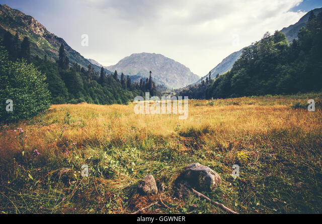 Mountains and forest valley idyllic Landscape in Abkhazia with cloudy sky Summer Travel serene scenic view - Stock Image