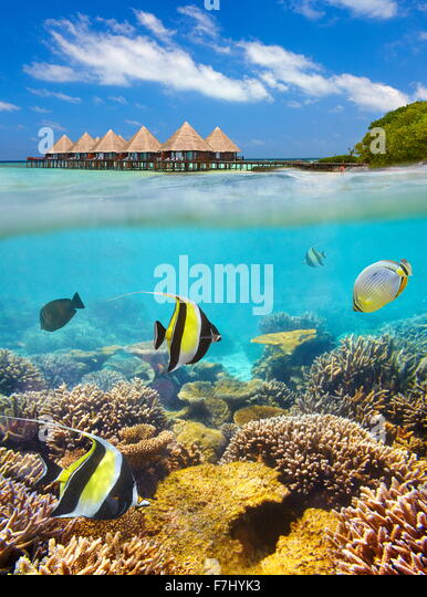 Tropical scenery at Maldives Islands, Ari Atoll - Stock Image