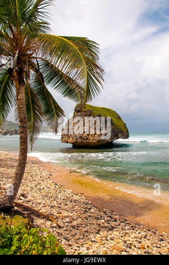 Dramatic rock formation on Atlantic east coast at Bathsheba Barbados - Stock Image
