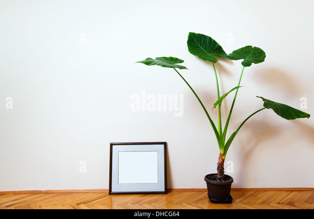 room - Stock Image