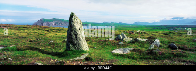 Vale Of Clara Nature Reserve, Co Wicklow, Ireland - Stock Image