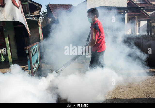Epidemiology of dengue: past, present and future prospects