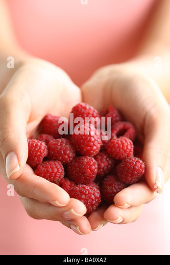 Hands holding red raspberries - Stock Image