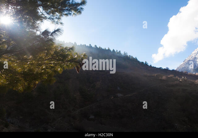 Landscapes Mountains Nature Morning Under Three Viewpoint.Mountain Trekking Landscape Background. Nobody photo. - Stock Image