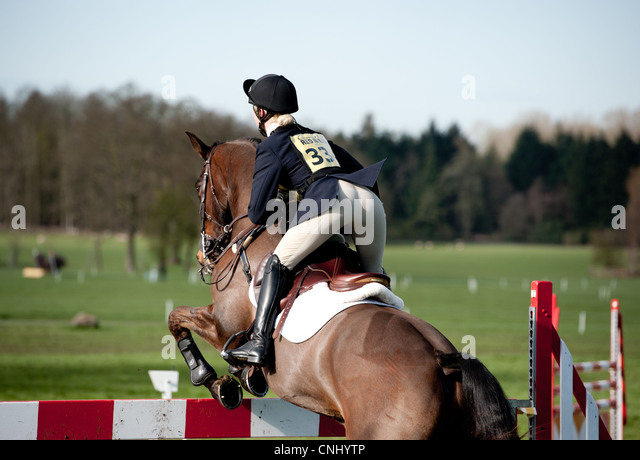 Horse Show Jumping - Stock Image