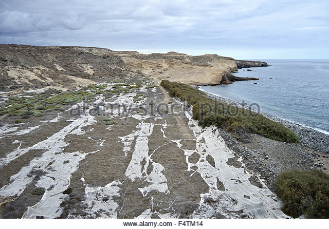 Land covered with plastics from greenhouses, southern coast of Tenerife Canary Islands - Stock Image