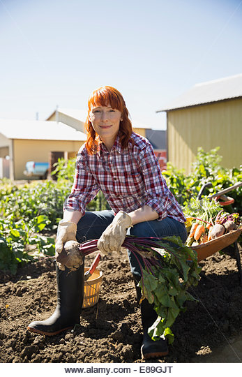 Portrait of woman harvesting vegetables in sunny garden - Stock Image