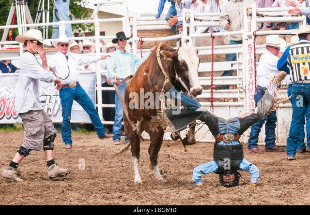 Rider being thrown during junior bull riding, Strathmore Heritage Days, Rodeo, Strathmore, Alberta, Canada - Stock Image
