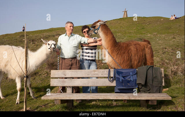 Two tourists rest with their Llamas - Stock Image