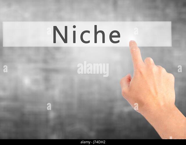 niche marketing research paper