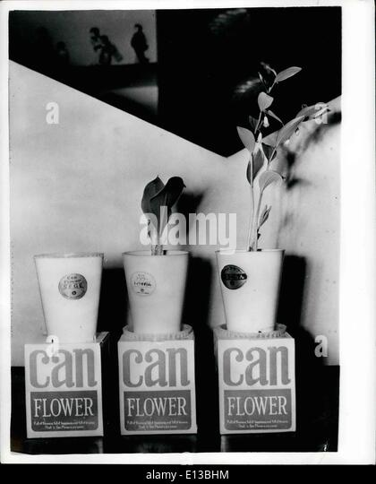 Feb. 29, 2012 - Give the one you love a canned flower - Timid men can avoid being teased when they carry a bunch - Stock Image