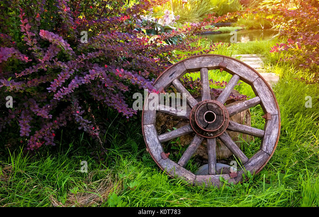 Stone age wheel stock photos stone age wheel stock for Old age home landscape design