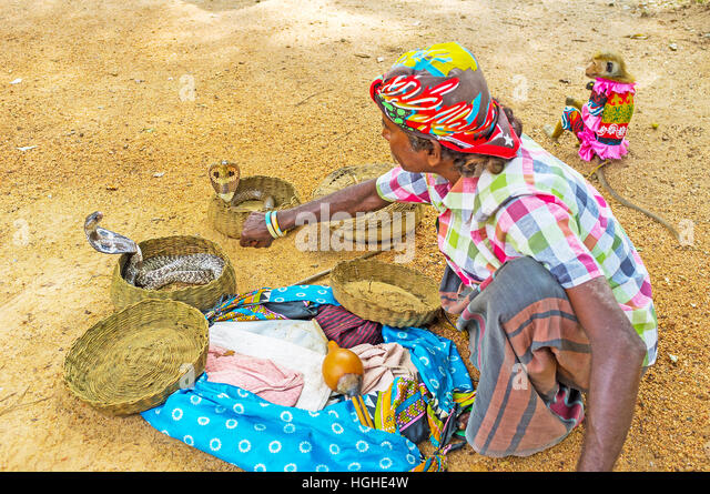 """snakecharmer and in the snake park A snake charmer's story 15 naag gumphan snake"""", i would catch that snake park) – when and where did you see this."""