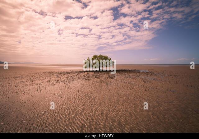 Far North Queensland, Australia - Stock-Bilder