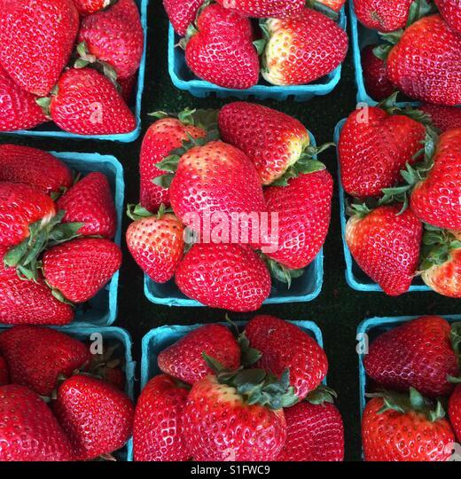 Strawberries - Stock-Bilder