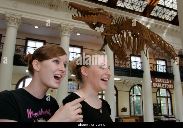 Alabama Tuscaloosa University of Alabama Museum of Natural History whale fossil - Stock Image