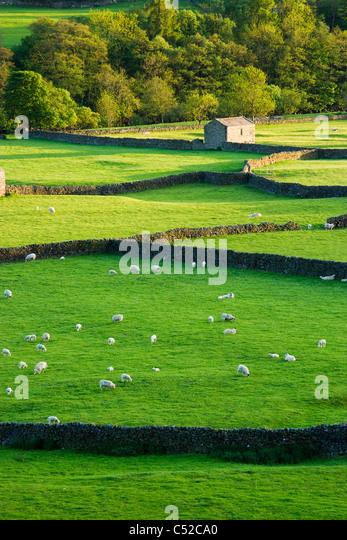 Gunnerside, Swaledale, Yorkshire Dales National Park, UK - Stock-Bilder