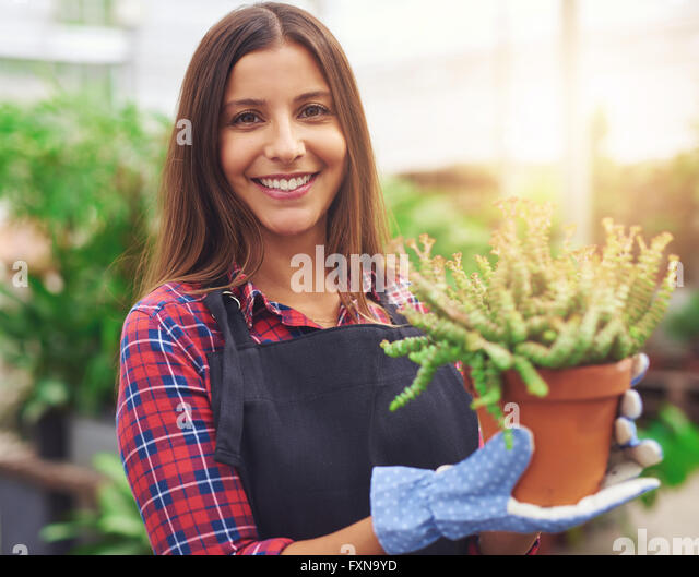 Smiling attractive young female employee at a flower nursery holding a potted plant for sale in her hands, glowing - Stock Image