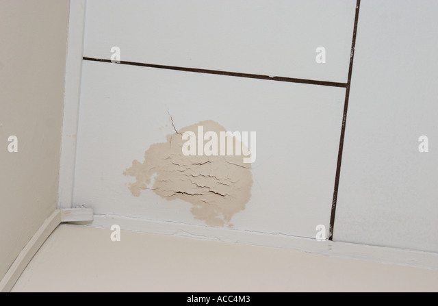 Water Damaged Ceiling Stock Photos Amp Water Damaged Ceiling