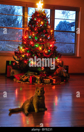 Christmas Tree with decorations - Stock Image