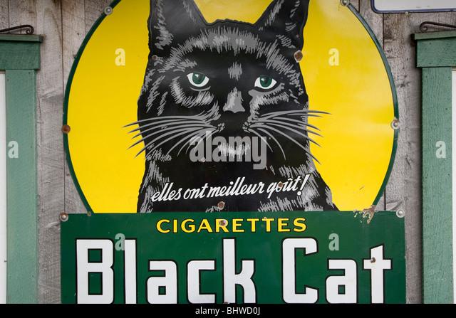 Vintage Cat Stock Photos Amp Vintage Cat Stock Images Alamy