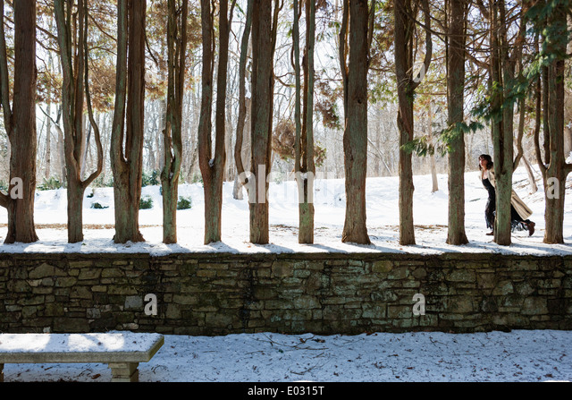 A woman in a fur coat walking along a row of trees. - Stock Image