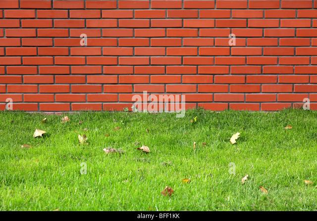 Red wall and green grass - Stock-Bilder