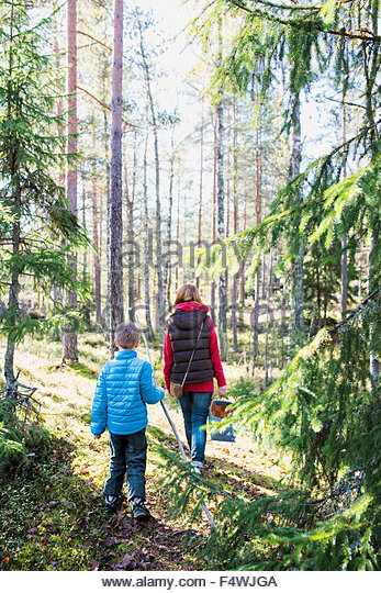 Mother and son (6-7) hiking in forest - Stock-Bilder