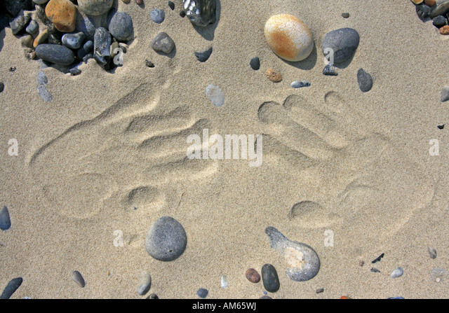 Print of two hands in the sand - Stock Image