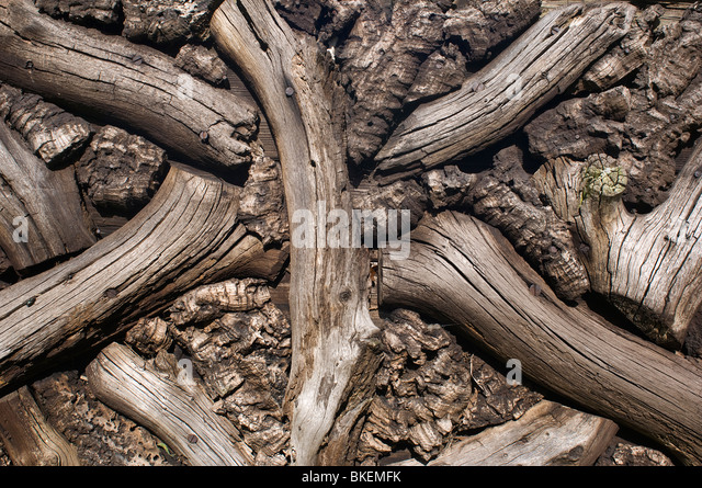 Wooden Pattern - Stock Image