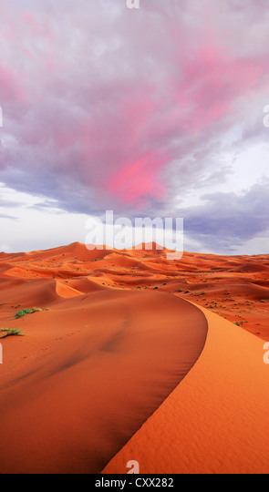 Dunes shaped by the wind and time - Stock Image