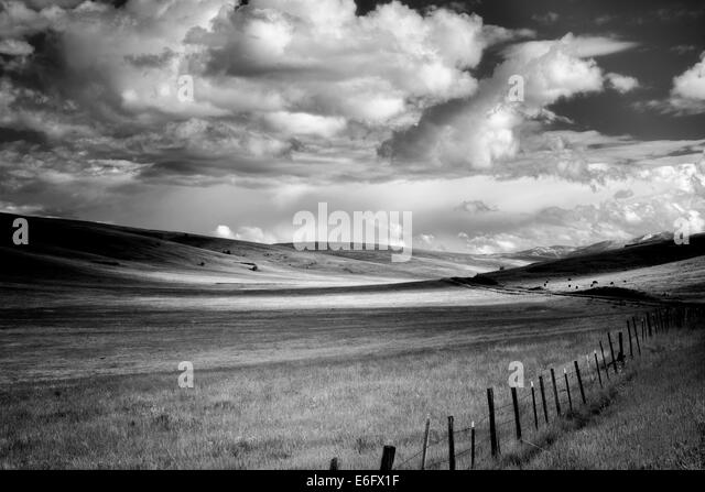 Pasture clouds and fence. Zumwalt Prairie Preserve, Oregon,cow,cows - Stock Image