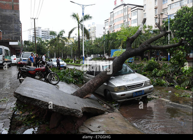 Fangchenggang China  city photos : Fangchenggang, China. 17th Sep, 2014. A vehicle lies hit by a fallen ...