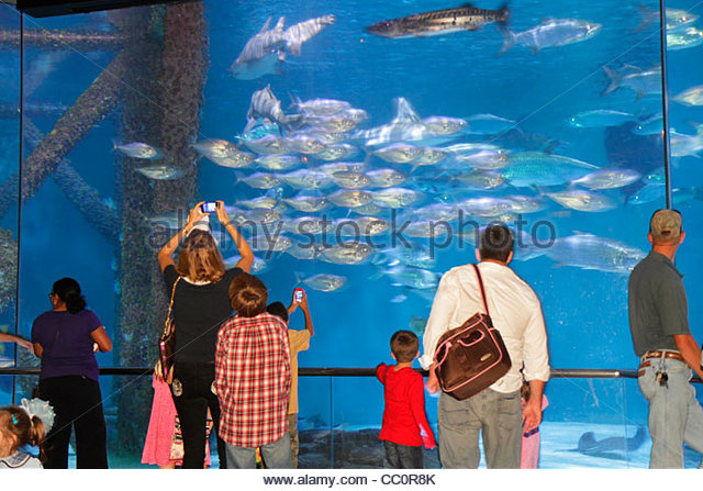 Louisiana New Orleans Woldenberg Riverfront Park Audubon Aquarium of the Americas research conservation aquatic - Stock Image