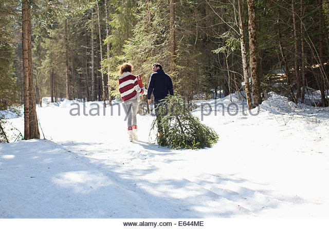 Man and woman with fresh cut Christmas tree - Stock Image