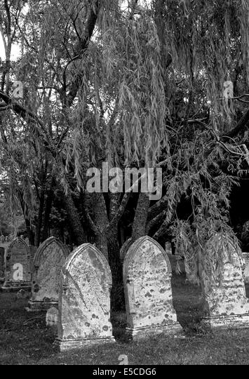 Old gravestones from the 1800s are found in this New England cemetery in Cape Cod, Massachusetts (MA), USA. B&W - Stock-Bilder