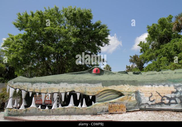Orlando Florida Christmas Jungle Adventure Nature Park & and Zoo entrance world's largest alligator sculpture - Stock Image
