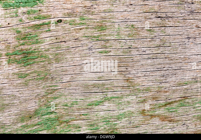 Knotty Wood Stock Photos Amp Knotty Wood Stock Images Alamy