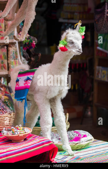 Decorated, festive, dried llama on sale at the Witches Market, Calle de las Brujas, La Paz, Bolivia - Stock Image