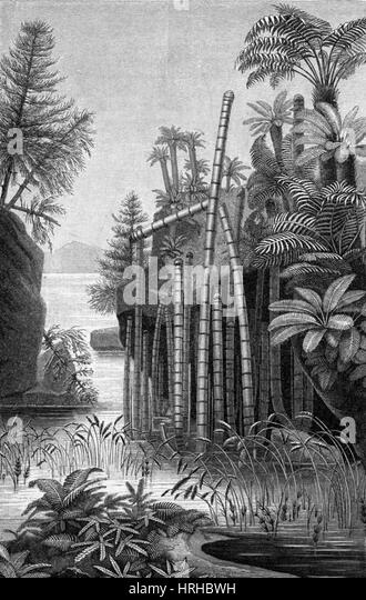 Plants of the Triassic Period - Stock Image