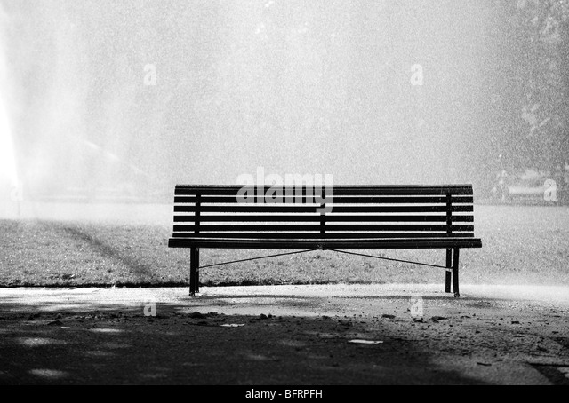 Bench in a park. Black and white concept. - Stock-Bilder