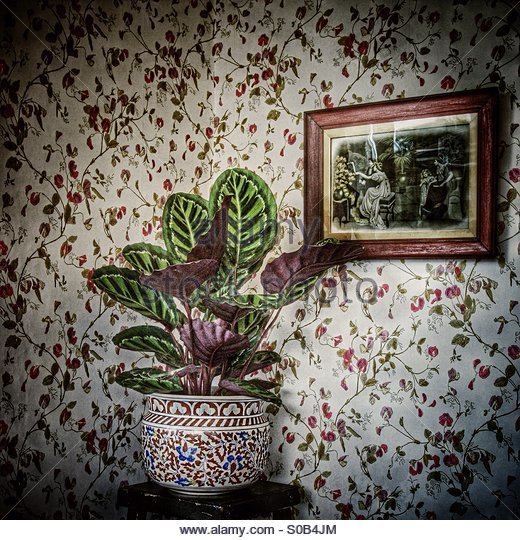 Nostalgia. A pot plant against old fashioned wallpaper with a framed vintage print on the wall. - Stock-Bilder