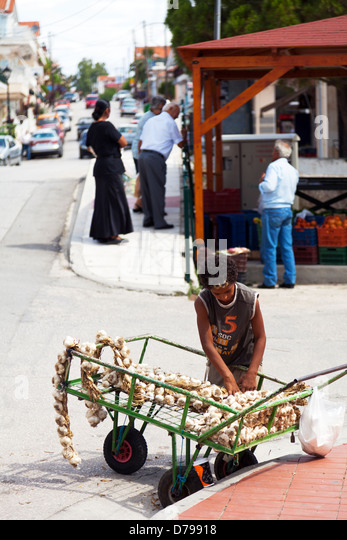 Kefalonia, Greek Island, Greece, young boy selling garlic from a cart on the side of the road to passers by, exploitation - Stock-Bilder