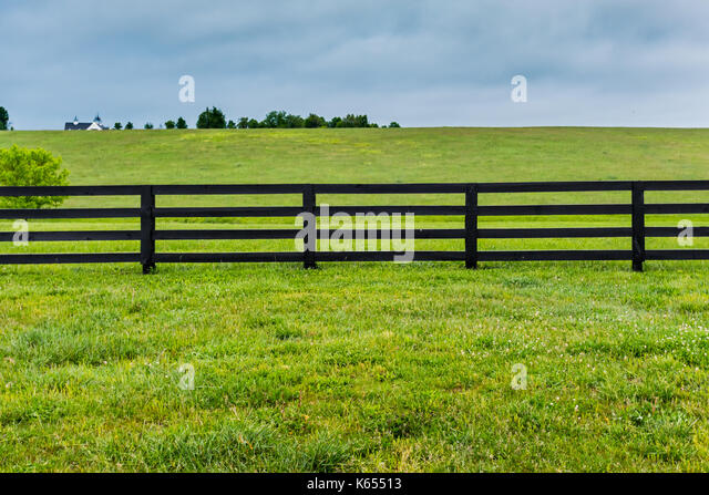 Section of Horse Fence and Pasture - Stock Image