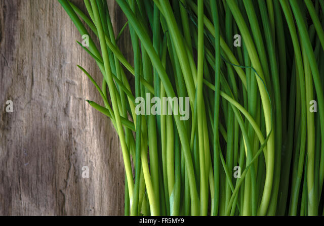 Green stalks of onions on a wooden table horizontal - Stock Image