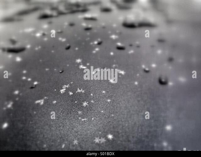 Perfect snowflakes on black metal - Stock Image