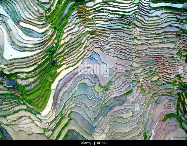Qiandongnan. 17th Apr, 2017. Aerial photo taken on April 17, 2017 shows scenery of terraced fields in Qiandongnan - Stock-Bilder