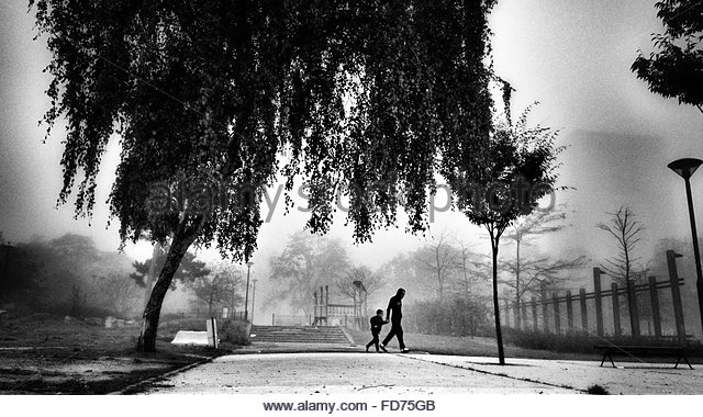 Father And Son Walking In Park - Stock-Bilder